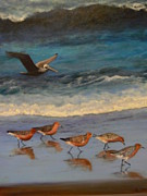 Catherine Hamill - Beach Birds