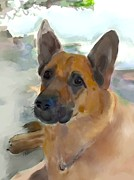 German Shepard Dog Prints - Beach Bum Print by Patti Siehien