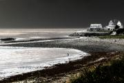 Ocean Front Photos - Beach Comber by Ron White