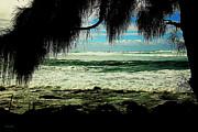 Cheryl Young - Beach Dreaming