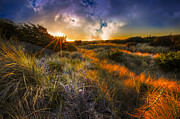 Autumn Scenes Art - Beach Dunes by Debra and Dave Vanderlaan