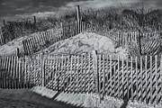 Beach Fence Bw Print by Susan Candelario