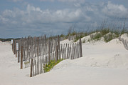 Debbie Green - Beach Fence