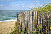 Summertime Framed Prints - Beach fence Framed Print by Elena Elisseeva