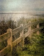 Painterly Digital Art - Beach Fence - Parksville BC by Janice Austin