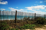 Rob Frederick - Beach Fence