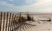 Beach Fence Prints - Beach Fence St Augustine Florida Print by Michelle Wiarda