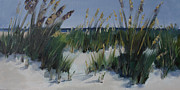 Sand Dunes Paintings - Beach Grass Waltz by Barbara Benedict Jones