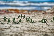 Ken Williams - Beach Head