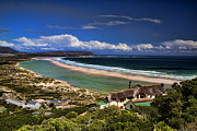 Atlantic Ocean Metal Prints - Beach in Noordhoek South Africa  Metal Print by David Smith