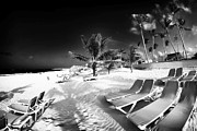 Beach Lounging Print by John Rizzuto