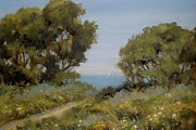 Landscapes Drawings Metal Prints - Beach Path #2 Metal Print by Tina Obrien