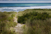 New England Ocean Digital Art Posters - Beach Path Poster by Bill  Wakeley