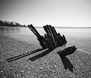 Monotone Prints - Beach Pilings Print by Stephanie McDowell