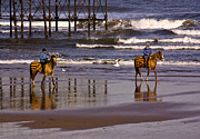 Horseriding Horse Riding Posters - Beach Ride Poster by Trevor Kersley