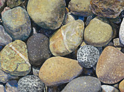 Birdseye Acrylic Prints - Beach Rocks 2 Acrylic Print by Nick Payne