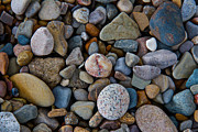 Indiana Dunes Prints - Beach Rocks Print by Lynne Dohner