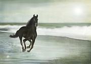 Galloping Prints - Beach Run Print by Linde Townsend