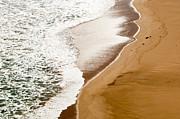 Tim Hester - Beach Sand Waves
