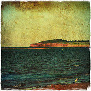 Carter House Prints - Beach Seascape Ocean Photograph Fine Art Print Print by Stephan Chagnon and Laura  Carter