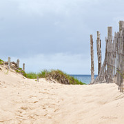 Beach Fence Photo Posters - Beach Sentinels on the Cape II Poster by Michelle Wiarda