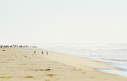 York Beach Metal Prints - Beach Serene Metal Print by Anahi DeCanio