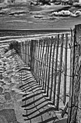 Fencing Originals - Beach Shadows by Boyd Alexander