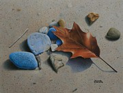 Pamela Clements - Beach Still Life II