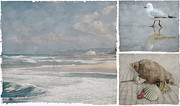 Gull Digital Art Prints - Beach Triptych 1 Print by Linda Lees