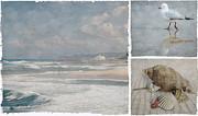 Beach Triptych 1 Print by Linda Lees