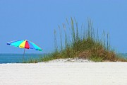 Clearwater Beach Posters - Beach Umbrella - Digital Painting Poster by Carol Groenen