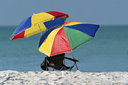 Beach Umbrellas Print by Gerald Marella