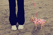Beach Walk Print by Laurie Search