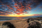Praia De Faro Prints - Beachcombers Sunset Print by Nigel Hamer