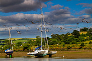 Beached Photos - Beached boats on the River Avon by Louise Heusinkveld