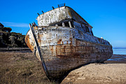 Wooden Ship Prints - Beached Point Reyes Print by Garry Gay