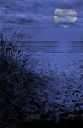 Sea Moon Full Moon Prints - Beachfront Full Moon Over the Ocean Print by Birgit Tyrrell