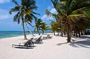 Beachy Belize Print by Kristina Deane