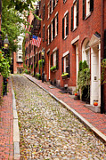 Acorn Prints - Beacon Hill Print by Brian Jannsen