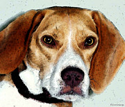 Little Dogs Prints - Beagle Art - Eagle Boy Print by Sharon Cummings