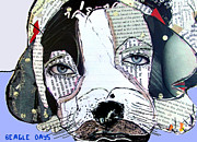 Mixed Media Of Dogs Posters - Beagle Days  Poster by Brian Buckley