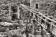 Sawmill Prints - Beans Mill in Black and White Print by JC Findley