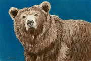 Wall Art Pastels - Bear by Anastasiya Malakhova