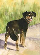 Dog Walking Prints - Bear Print by Anne Gifford