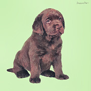 Lab Digital Art Originals - Bear. Choco lab. by Denis Galkin