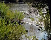 William Havle - Bear River Beauty