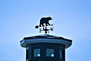 Weathervane Photos - Bear Weathervane by Tara Potts