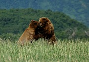 Confronting Art - Bears in the Meadow by Patricia Twardzik