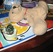 Stuffy Prints - Beary Takes A Nap Print by Melissa McCrann