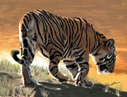 Tiger Paintings - Beast of Bandhavgarh by Barbara Czepulkowski